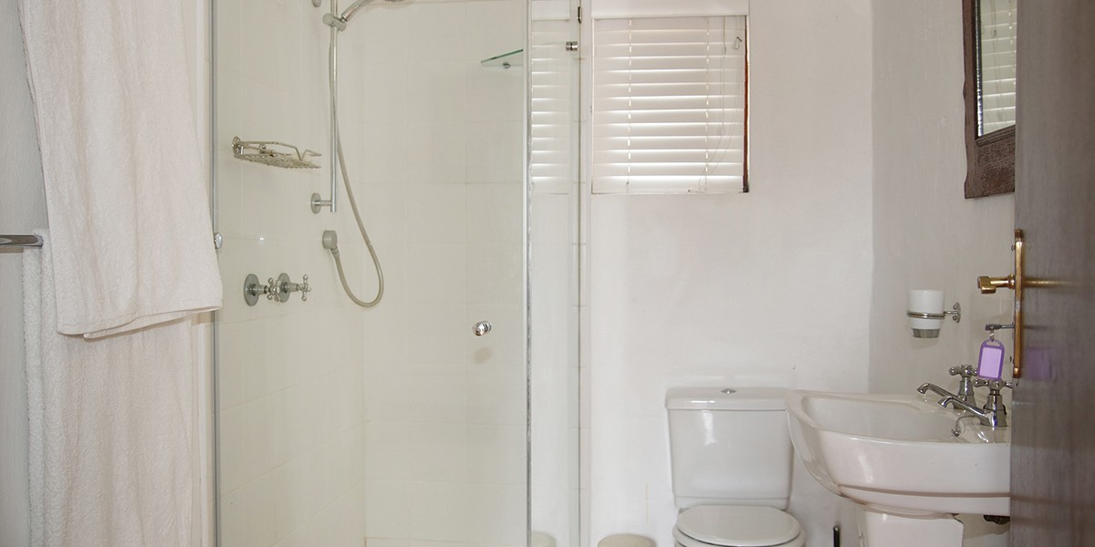 Loft-room-separate-shower